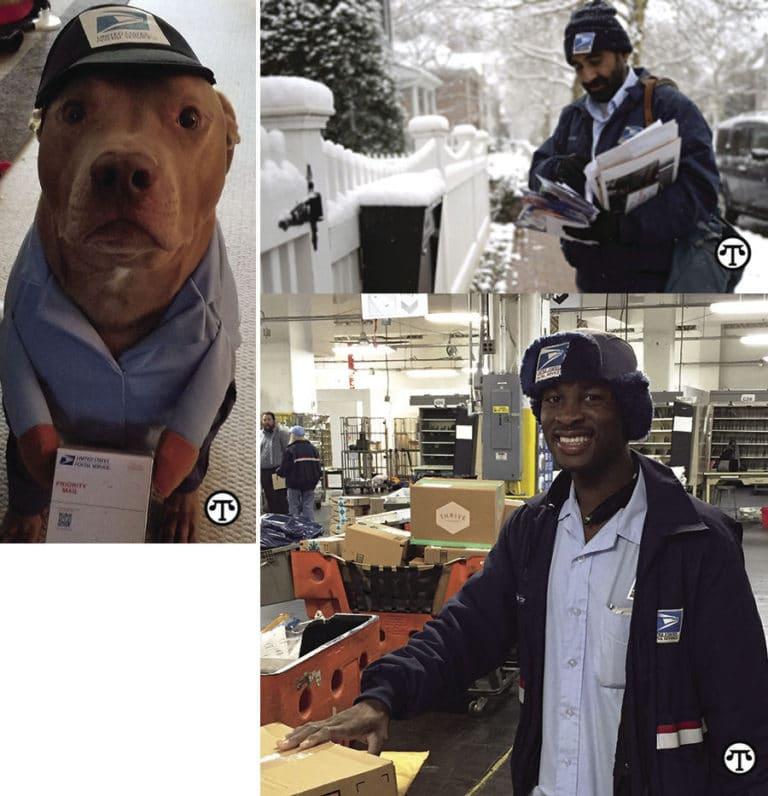 Sugerencias de seguridad de Papá Noel para la gente, mascotas y paquetes