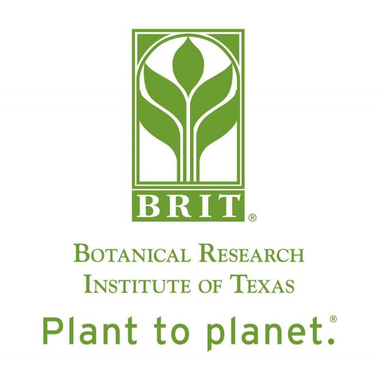 BRIT names two to receive 2020 International Award of Excellence in Conservation