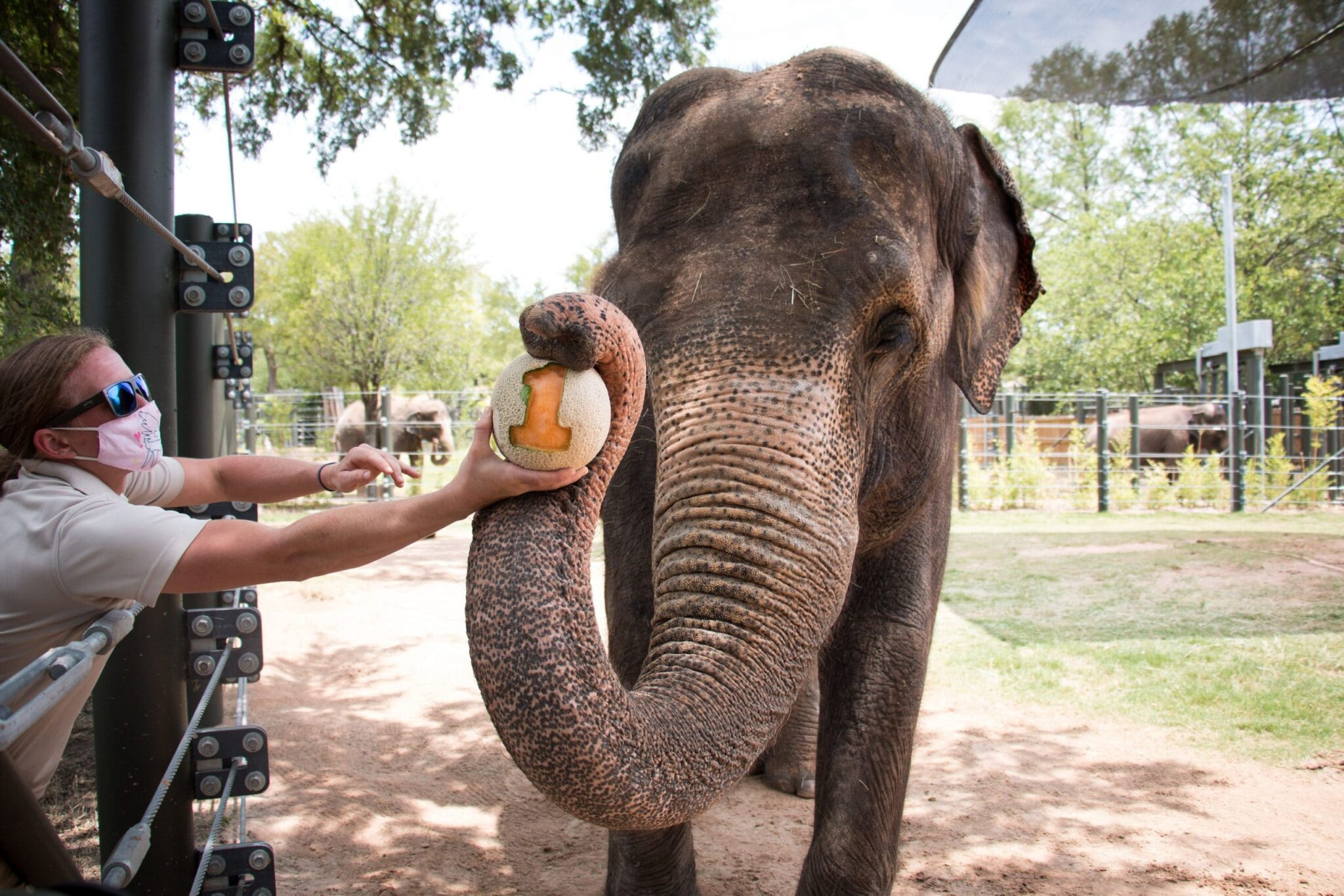 This just in: Fort Worth Zoo No. 1! (But we knew that, didn't we?)